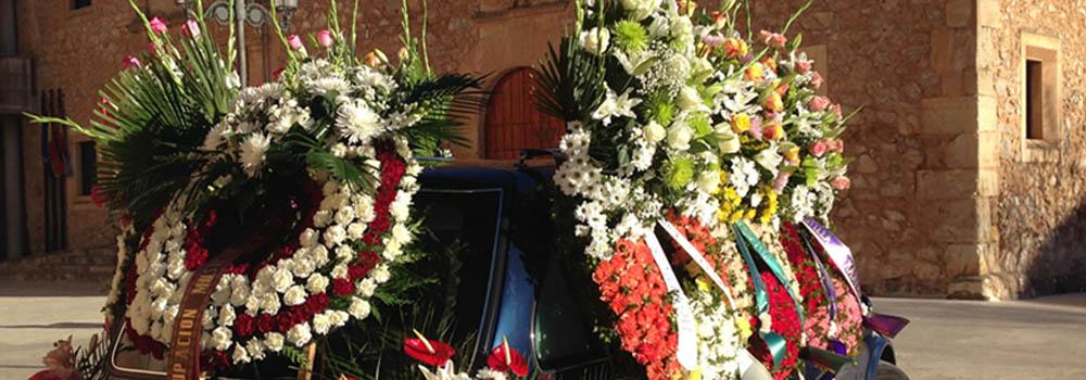 Slide Quiénes somos 03 | Grupo Alborada Servicios Funerarios